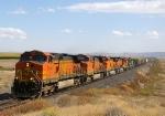 BNSF 4694 West