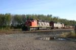 CN 5284 Train 393