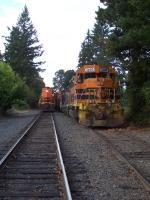 2 Different Trains