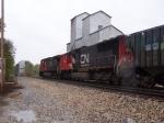 CN 5619