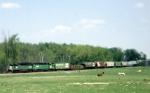 BN Train #441