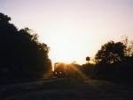 CSX Q664 at sunset
