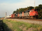 CN 5515