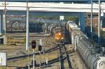 BNSF 5141 South at Tower 55