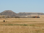 BNSF 9679 leading a SB coal train
