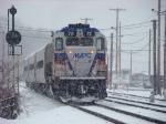 Snowy 72