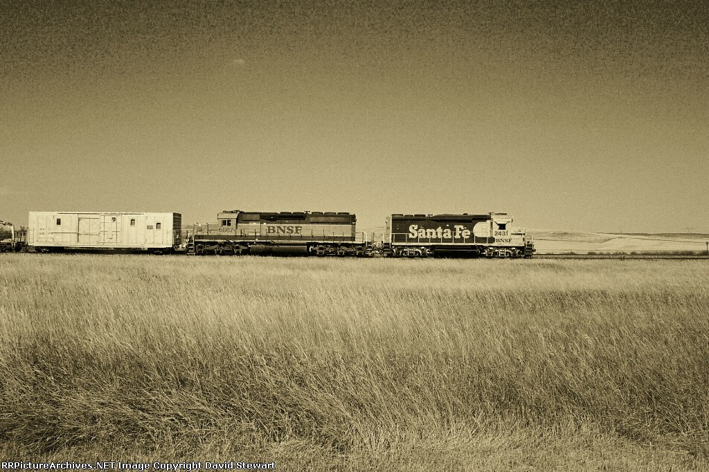 BNSF 2431