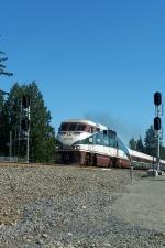 Amtrak#501