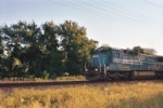 NS 8310