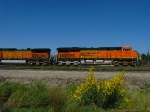 BNSF 7530