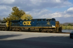 CSX 591 on point of Coal empties at Maysville Depot