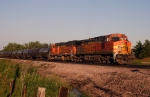 BNSF 5631