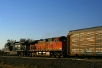 Norfolk Southern C40-9W 9814 and BNSF C44-9W 4073 leads an westbound.