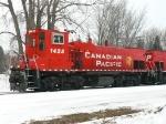 CP 1428