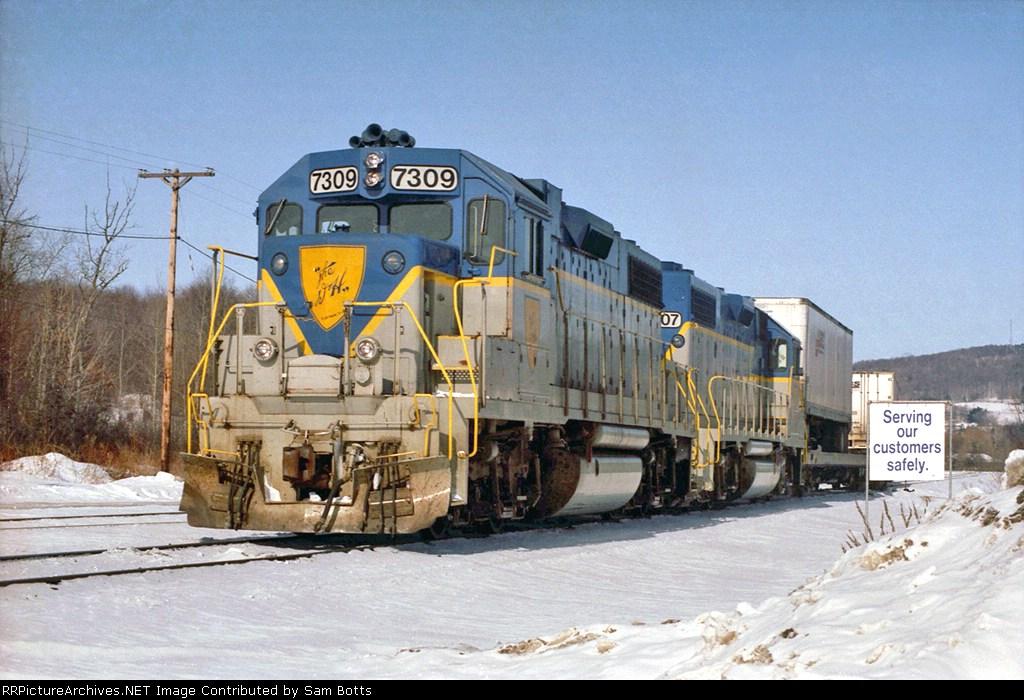 DH 7309
