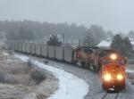 Northbound BNSF Empty Coal Train