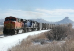 Southbound BNSF Loaded Coal Train DPU's and Helper