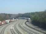 NS #7554 Snakes His Way Out of Macon