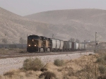 UP 7191 leads a WB grain train at 12:54pm