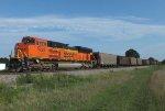 BNSF 9223 (NS #736)