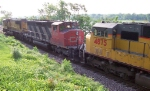 CN 5321