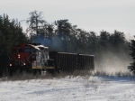CN 4029 and two loaded coal hoppers