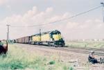 CNW 6804