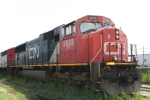 CN 5635 heads the coal train power