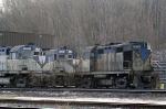 DH 5019