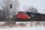 CN 5604