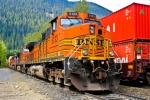 BNSF 5133 Stopped