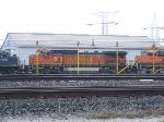 BNSF 816