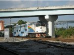 Tri-Rail P635 Arriving at the Station