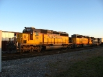 Basking in the setting sun, Train 240's power sits on the main, behind Causeway Lumber