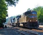 UP 4263 NS Train 214