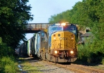 CSX 8730 Q300