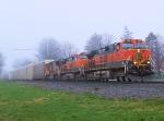 BNSF 1099 NS Train 212