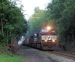 NS 9506 Train 214