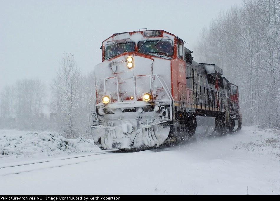 Snowy Trip