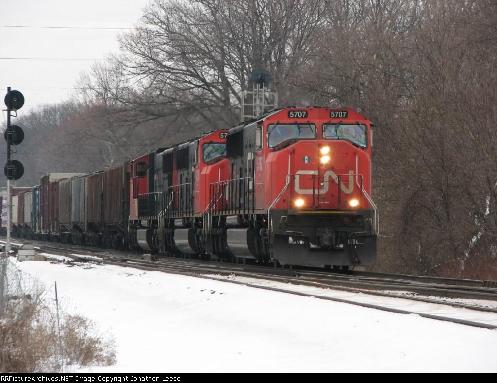 393 Clearing Cedar