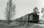 BN Train on the Florida Panhandle