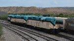 Arizona Central Geeps