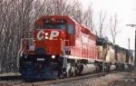 CP 5597