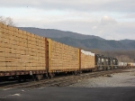 Enjoying the smell of lumber as the VSO1 pulls past the station