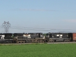 NS 8982 & 3341 on the SB 15T