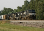 NS 9704 leads her horses south towards the meet