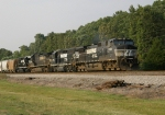 A nice variety of Thoroughbred Power on this SB freight