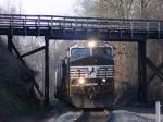 NS 204 rolls under a classic wooden bridge