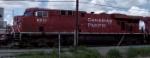 CP 8811