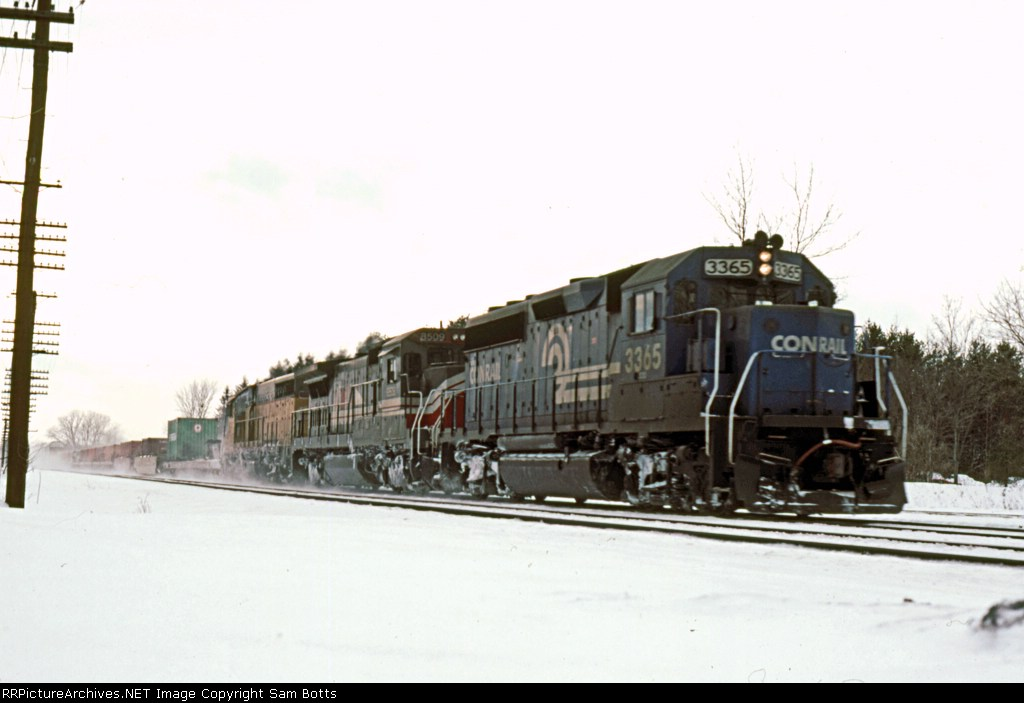 CR 3365